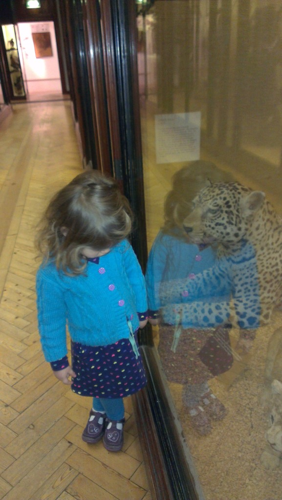 Toddler at Tring Natural History Museum