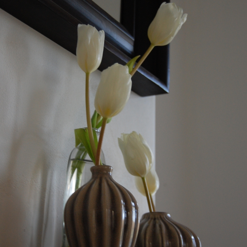 White tulips in small vases